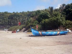 Пляж северного Goa