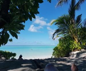 Бюджетные мальдивы 2, остров Thoddoo