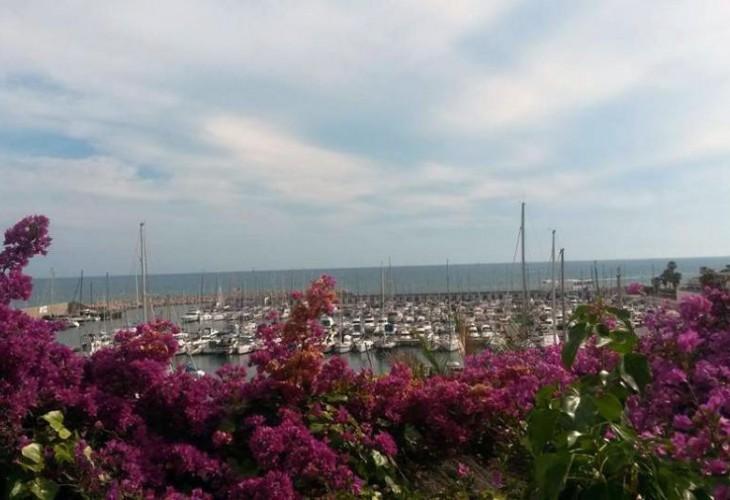 Гава, Испания